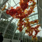 Chihuly Garden and Glass Exhibit. Seattle, WA (2016).