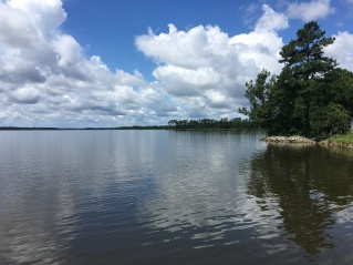 Views of South Creek to the Pamlico Aquaculture Field Lab (2017, Erin Ducharme).